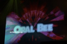 Oral Bee_©Artistfoto.no_021